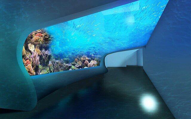 DMMかりゆし水族館 画像8