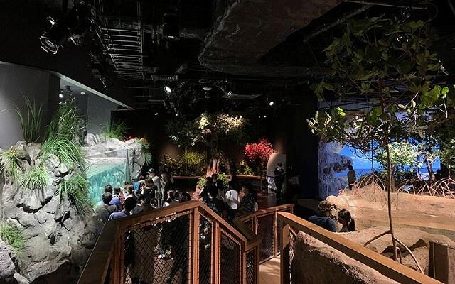 DMMかりゆし水族館 画像4