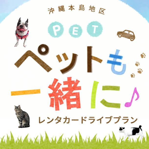 家族みんなで沖縄を楽しむ♪ペットも一緒にレンタカードライブプラン