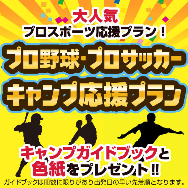 プロ野球・プロサッカー沖縄・宮崎キャンプ応援プラン